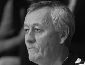 Nikola Jevremovi Guzva (1951 - 2010)