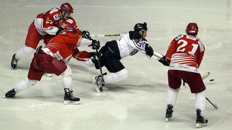 hokej-zvezda