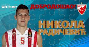 Никола Радичевић